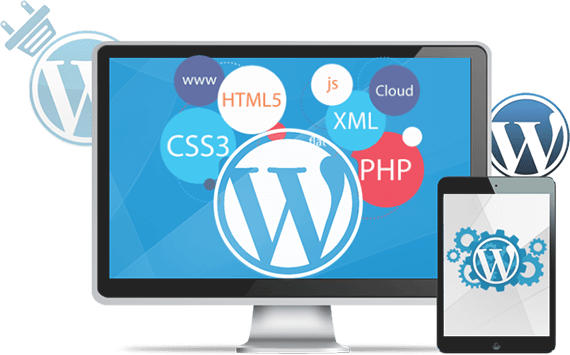 wordpress-custom-development
